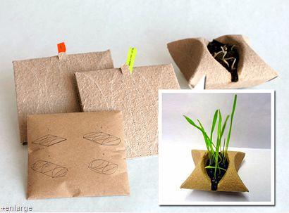 regalo sustentable