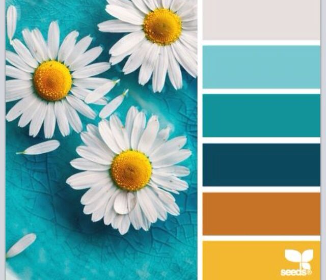 daisy color palette add charcoal gray bedroom