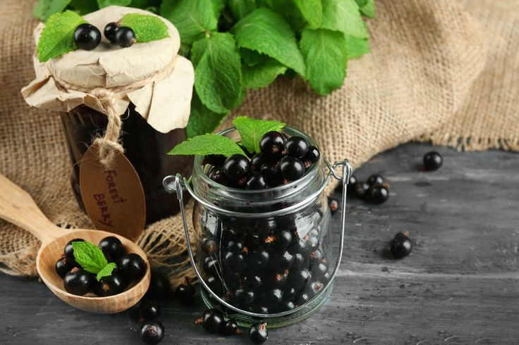 Black currant (Ríbes) leaf is known for richness in antioxidants and vitamin C. The plant can support normal fat breakdown by increasing natural metabolism.