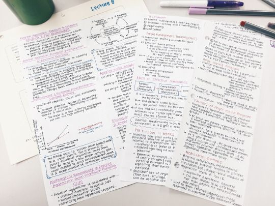 joo-ah-lee: Making study notes for my Abnormal Psychology midterm on Monday~ My hand is cramping