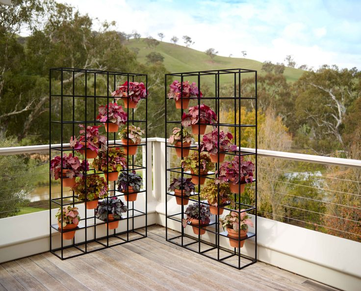 Add a variety of fresh colours to your outdoor decor with Schiavello's new Vertical Garden.