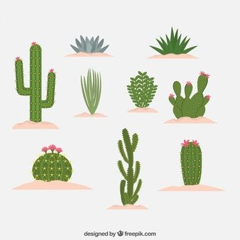 180 best images about hacer en tarjetas on pinterest for Tipos de cactus