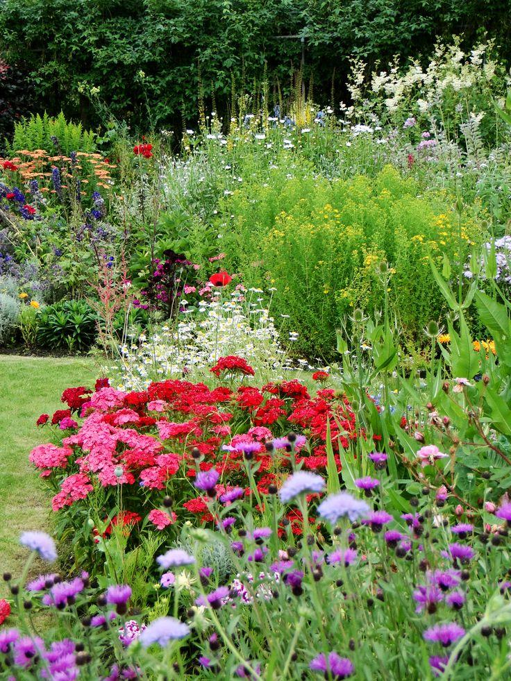 Best 25+ English Cottage Gardens Ideas On Pinterest