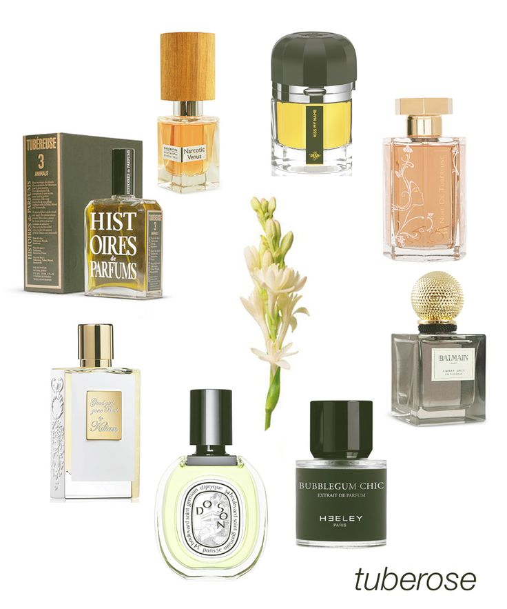 Tuberose: one of the most captivating floral notes.  Some of our favorites include Narcotic Venus, Kiss My Name, Nuit de Tubereuse, Balmain, Bubblegum Chic, Do Son EDT, Good Girl Gone Bad, and Tubereuse 3 - Animale. #niche #perfume #luckyscent