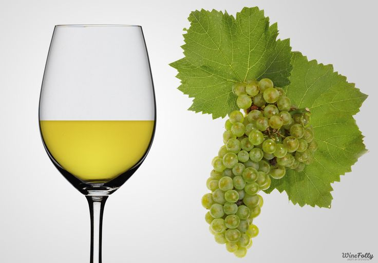 Chardonnay is the most diverse -and most planted- white wine grape in the world. Chardonnay wine ranges from rich and buttery to super zesty. Find out how to get the style of Chardonnay wine you like.