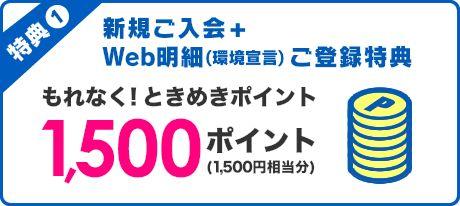 特典1:新規ご入会+Web明細(環境宣言)ご登録特典 もれなく!ときめきポイント1,500ポイント(1,500円相当分)