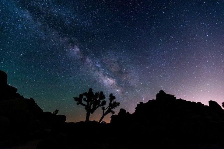 The Milky Way and Night Sky Joshua National Park California