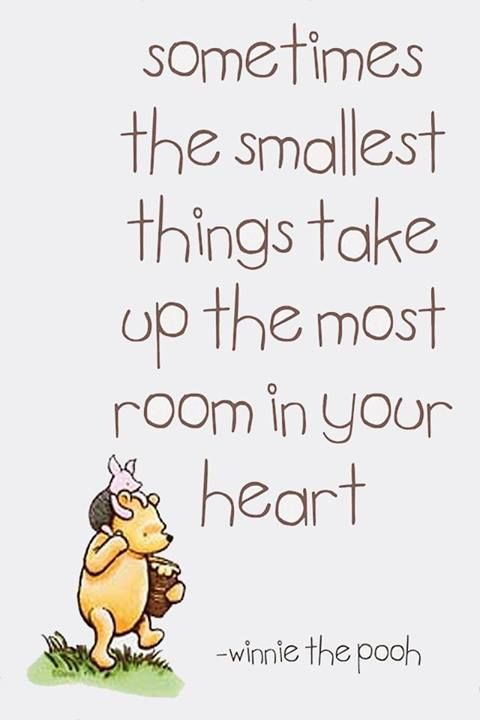 winnie the pooh will forever be my favorite. :)