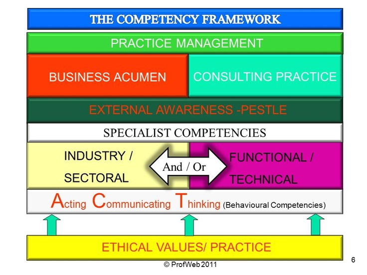 competency model for professional project managers Competencies for managing change  project managers and change managers,  produced by the project management professional associations.