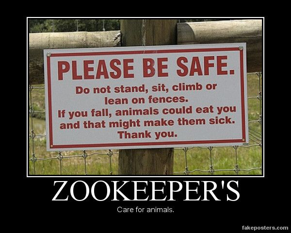 Best Future Job Images On Pinterest Zoo Keeper Zoology And Zoos - 20 hilarious photos of what zookeepers get up to after closing hours