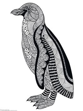 Penguin Doodle Coloring Pages Coloring Therapy Pinterest
