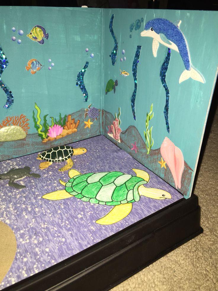 Green Sea Turtle Diorama