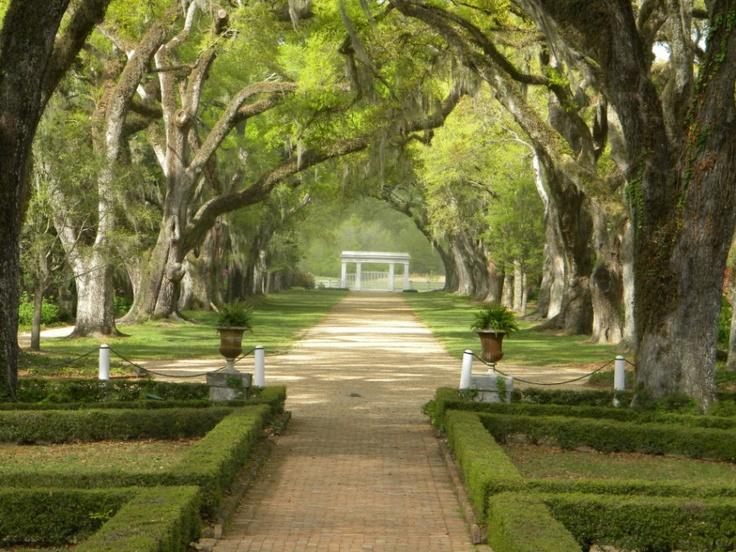 the rosedown plantation st francisville la beautiful