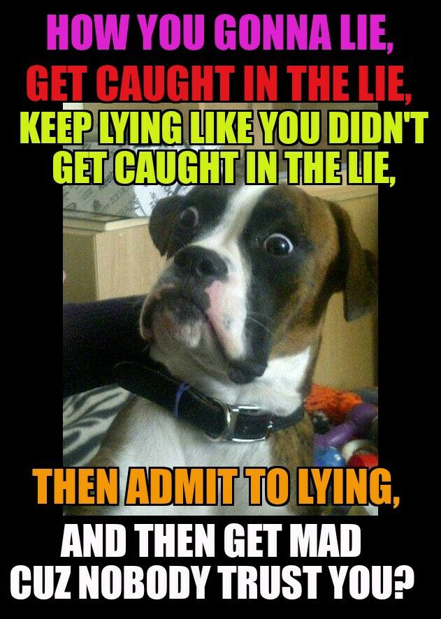 Liar humor