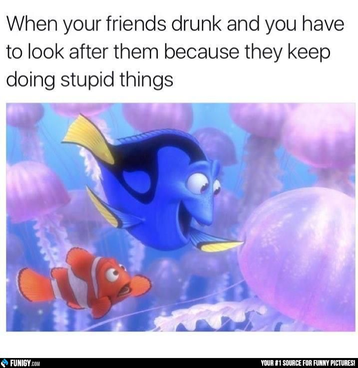 When your friends drunk (Funny People Pictures) - #drunk #look #stupid