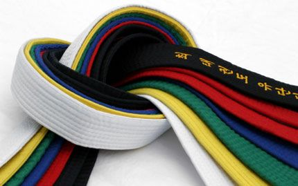 Taekwondo colors. Love this picture