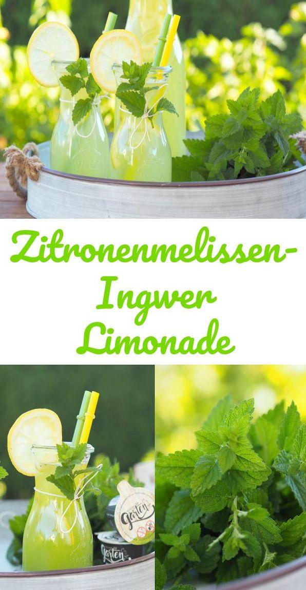 {Werbung} Mit wem explodiert die Zitronenmelisse immer im Garten? Ich habe …   – Abnehmen – Rezepte und Tipps | Gruppenboard