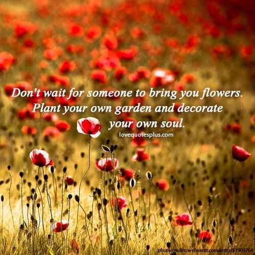 Quotes About Love Quote Garden : Garden Of Love Quotes. QuotesGram
