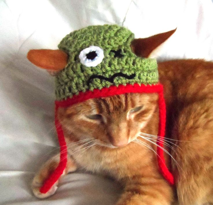 Zombie Crochet Hat for cats, Hats for Cats, Novelty Pet Hat, Halloween Crochet Hat. - pinned by pin4etsy.com