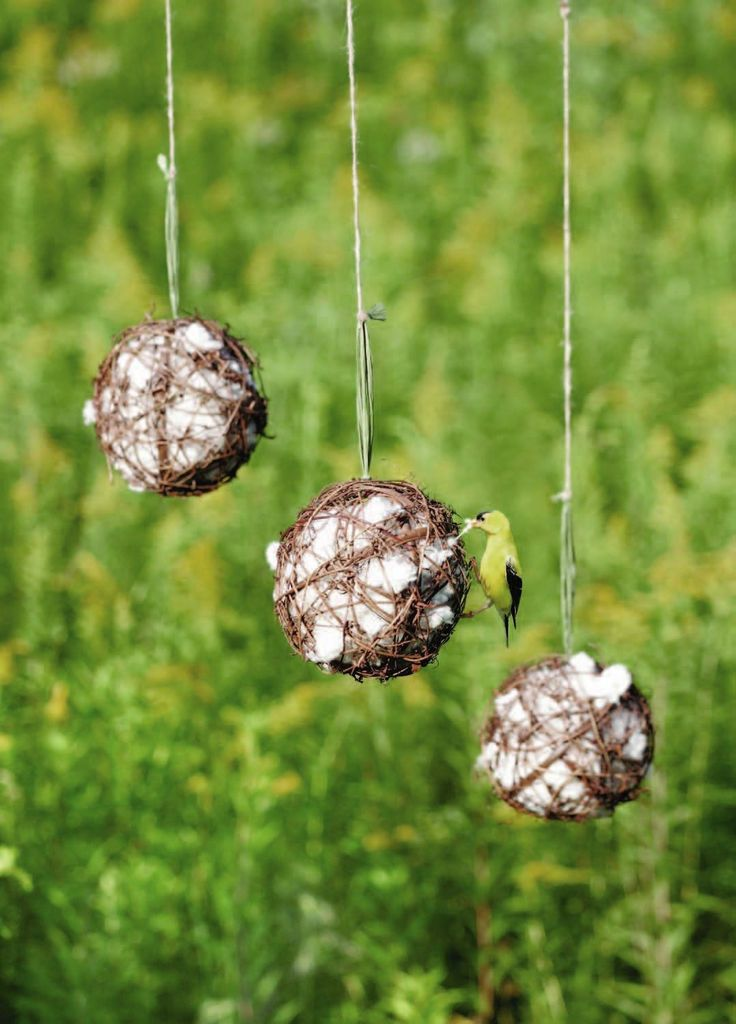 nesting materials-- grapevine balls filled with cotton