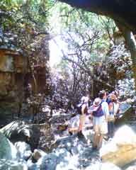 Kranskloof Hiking Trails-Magaliesberg