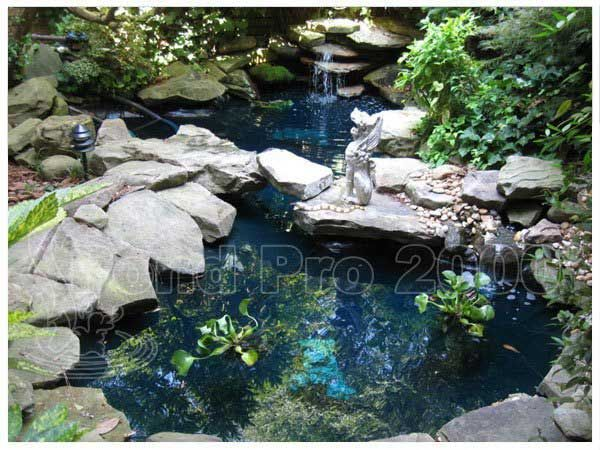 Best 25 Epdm Pond Liner Ideas On Pinterest Farmhouse