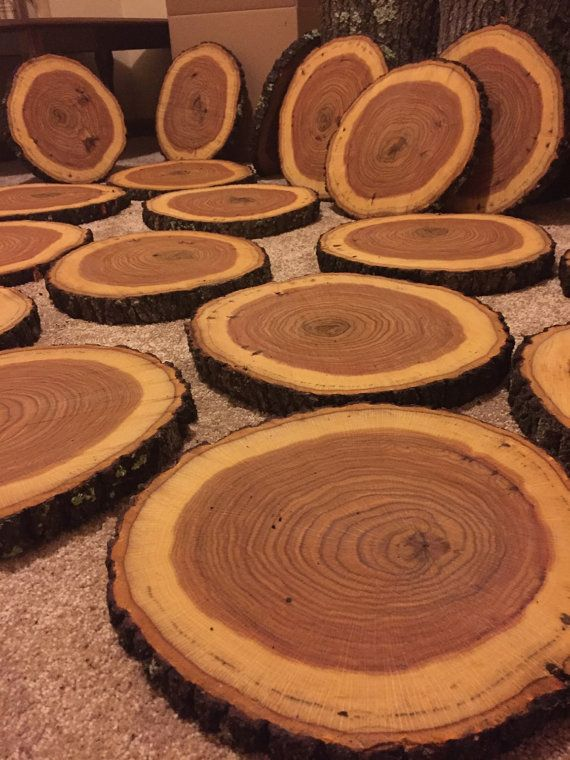 "11-12"". Set of 10. Rustic wedding centerpieces. Wood Slices, Wood rounds. Center pieces, wood chargers, wood slabs, Wedding decor."