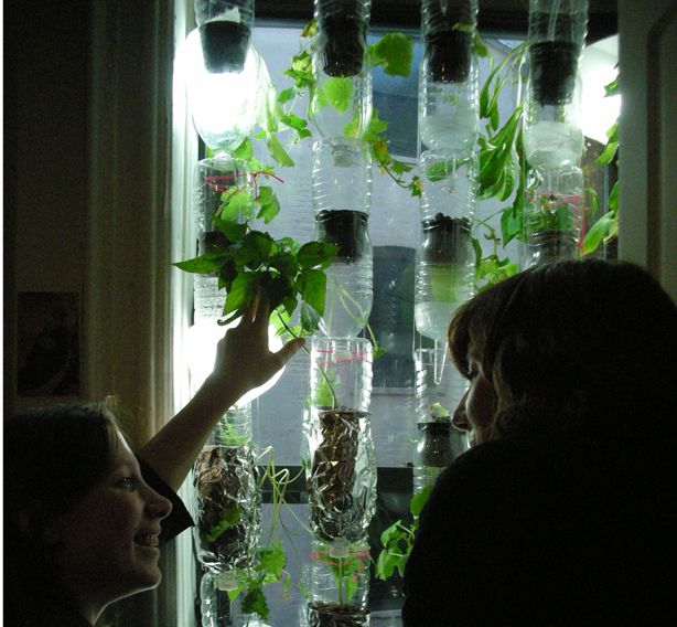 Good Window Farms: Hydroponic Edible Gardens For Urban Windows