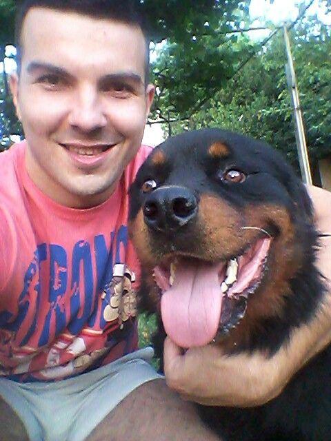 Artur je malo porastao :) #rott #rottie #rottweiler #dog #awesome