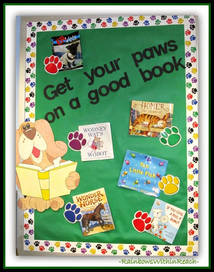 Marvelous 200 Back To School Bulletin Boards And Decorated Doors