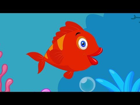 Kırmızı Balık Çocuk Şarkısı - YouTube