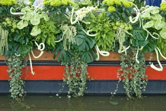 Holland vizi-virágkarnevál - Toochee