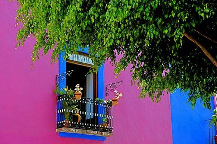 Rosa muy mexicano