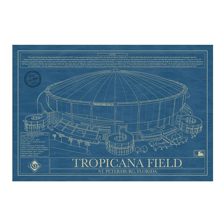 Tampa Bay Rays Art Baseball Tampa Bay Rays Baseball Baseball Wall Art Baseball Stadium