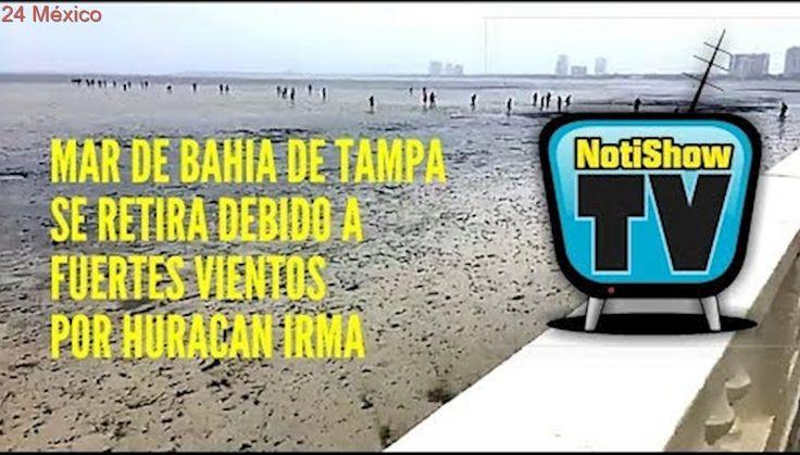 Mar se retira en la Bahía de Tampa - Florida - EE.UU.