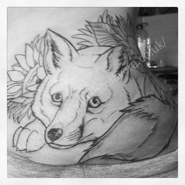 Fox Face Line Drawing : Best tsimshian images on pinterest aboriginal art