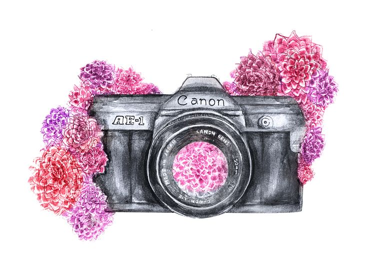#watercolor #camera #illustration #flowers