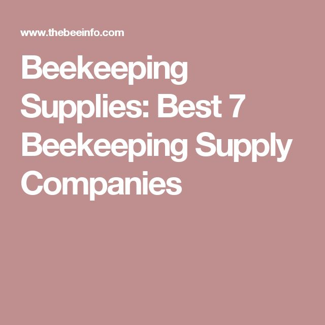 Beekeeping Supplies: Best 7 Beekeeping Supply Companies