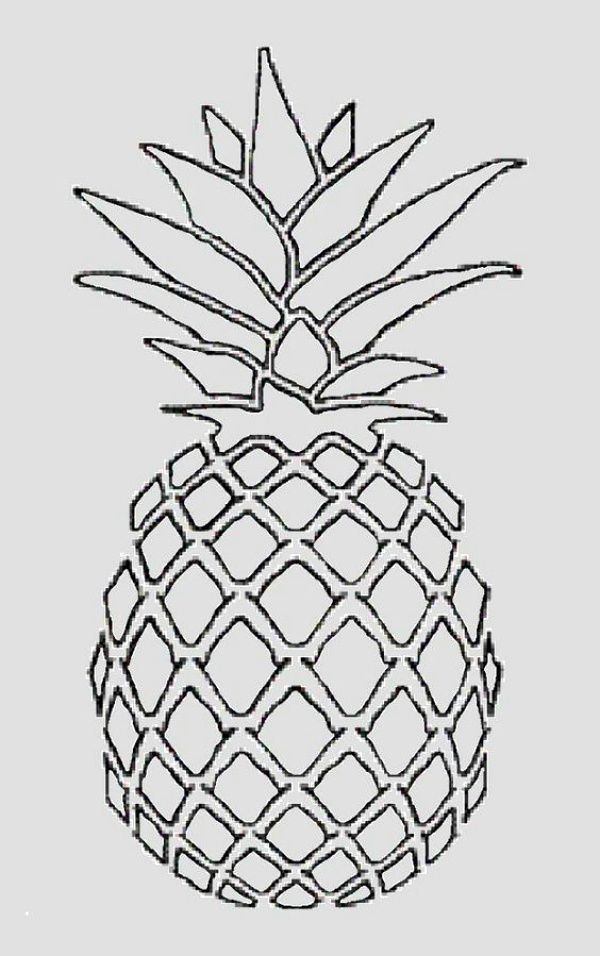 40 Best Examples Of Line Drawing Art Ananas Dessin Image