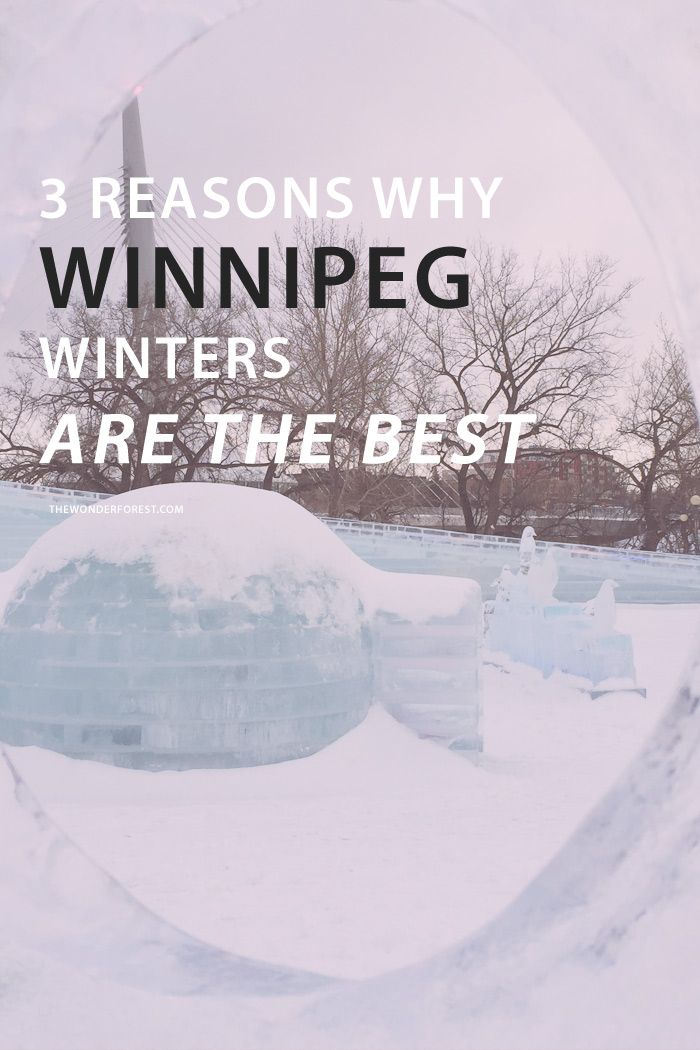 I'm sure you've heard that Winnipeg has freezing cold temperatures, or that nothing really happens here – and I'm here to tell you that those misconceptions are wrong. Sure, we have our cold spells – but so do many other large prairie cities, yet they don't have a quippy nickname (Winterpeg is catchy, I'll give you that) and are rarely known for their weather alone. And not enough to do? Please. We have one of the best arts scenes in Canada | 3 Reasons Winnipeg Has The Best Winters