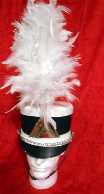"""10"""" white and silver Hat Plumes $10.00"""