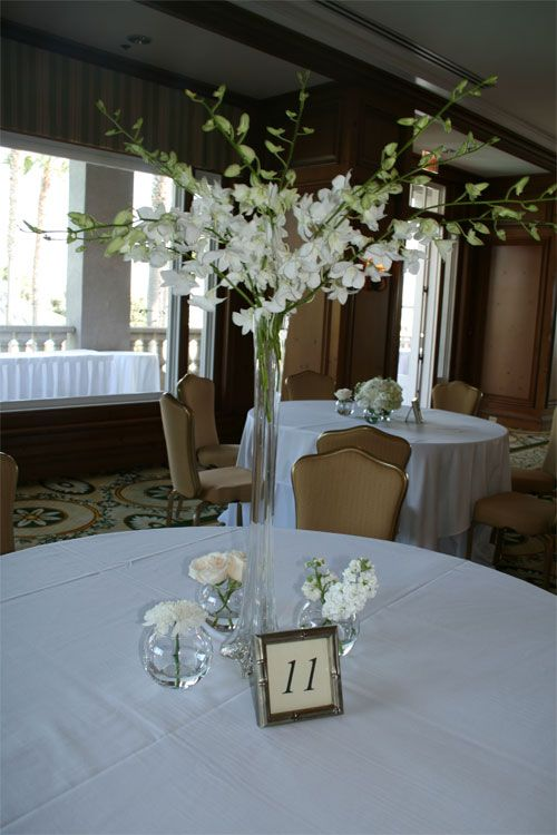 All White Orchids I Have These Tall Vases Very Pretty As A Possible Centerpiece Option