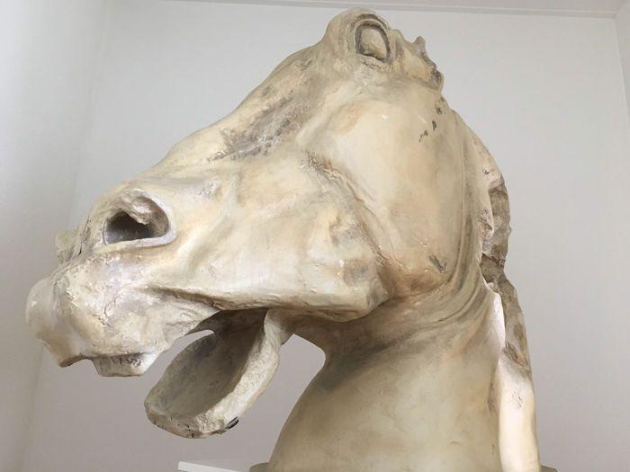 Uniek en mega groot paardenhoofd - 115 meter hoog  Mega groot paardenhoofd afkomstig uit het Casino. Bijzonder en uniek in zijn soort. 1 van van de 3 hoofdendie oorspronkelijk boven een serie speelautomaten heeft gehangen.waarschijnlijk uit de jaren 80/90Hoofd is hol van binnenAfmetingen van het hoofd:Snuit tot manen: 1.40 m (voor naar achter)Hoogte 1.15 m (onder naar boven)Breed: 45 cm Neus tot en met voorhoofd 1.20mMateriaal is polyester.  EUR 1.00  Meer informatie