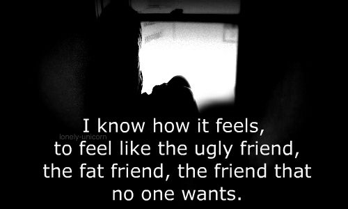 i know how it feels, to feel like the ugly friend, the fat friend, the friend that no one wants