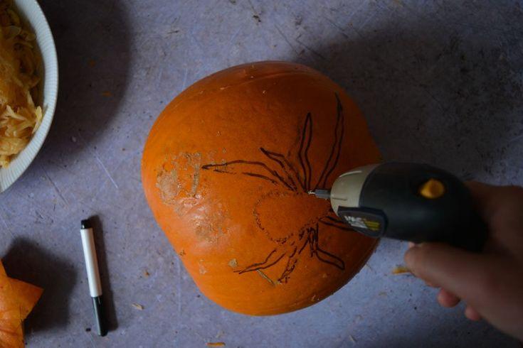 Best 25 Pumpkin Drilling Ideas On Pinterest Pumpkin