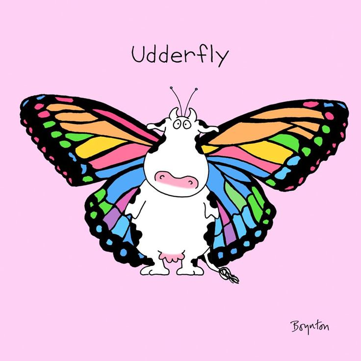 135 Best Images About Butterfly Humor On Pinterest