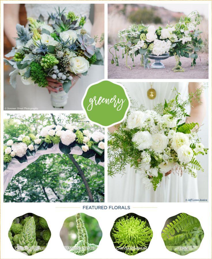 102 best greenery wedding ideas images on pinterest dream wedding flower ideas inspired by 2017 pantone colors junglespirit Choice Image