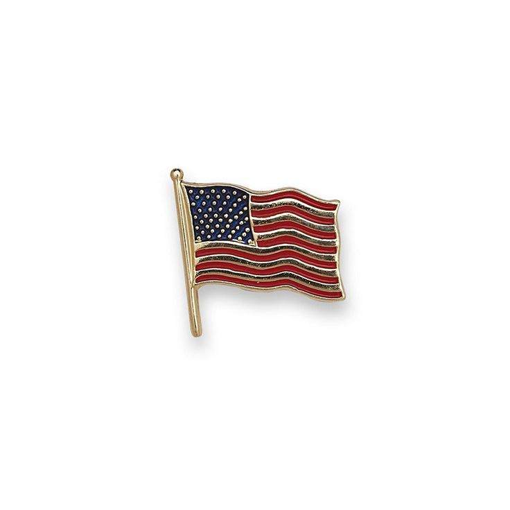 14k Yellow Gold American Flag Lapel Pin 14.5x14mm Color - JewelryWeb ** Want additional info? Click on the image. #NiceJewelry
