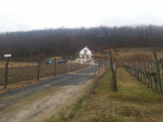 A village in Szekszard