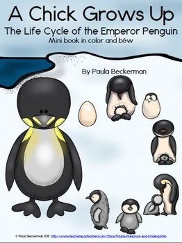 A 12 page minibook provided in both color and b&w, A Chick Grows Up is a non-fiction printable for your primary students. Facts are presented simply, with beautiful graphics from Educasong. A list of vocabulary and definitions is included, as well as a follow up worksheet and answers. Your students will love learning about the largest penguin species with this fun science reader! TpT $